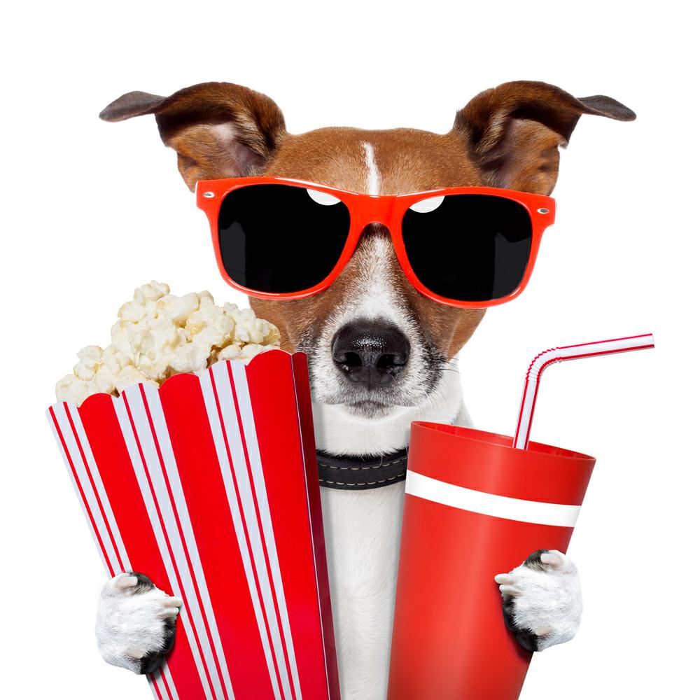 Al cine por 1 euro blog de caja rural de navarra for Cines arenys precios