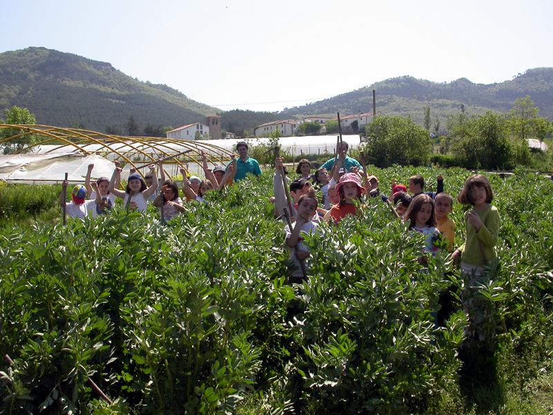 Campamentos de verano blog de caja rural de navarra for Caja rural de navarra oficinas